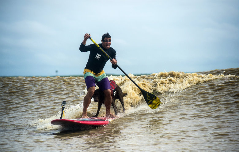 Longest Stand Up Paddleboard (SUP) ride on a tidal bore by a human/dog pair